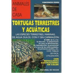 Tortugas terrestres y...